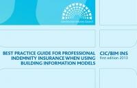 CIC/BIM INS 2013